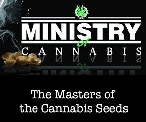 Ministry of cannabis