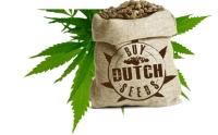 Dutch Seeds